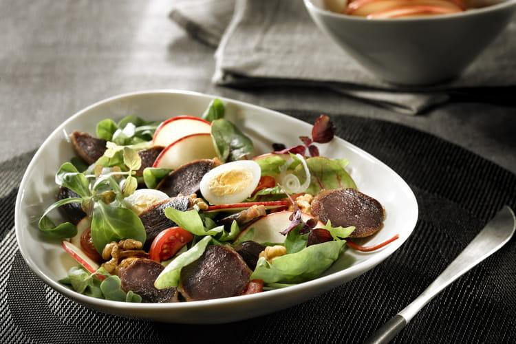 Salade de gésiers de canard confits des Landes et pomme fraîche