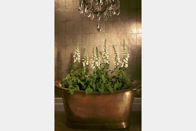 papier peint antique mirror par cole son chez au fil des couleurs. Black Bedroom Furniture Sets. Home Design Ideas
