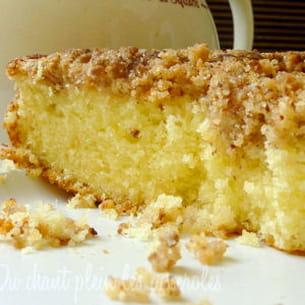 placek (gâteau polonais couvert d'un streusel)
