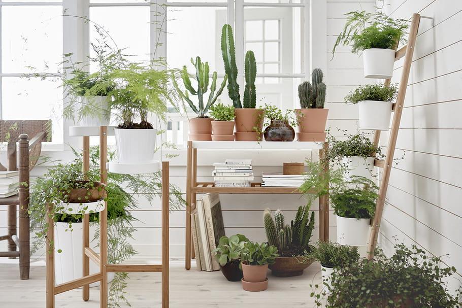 coup de c ur les supports pour plantes satsumas d 39 ikea. Black Bedroom Furniture Sets. Home Design Ideas