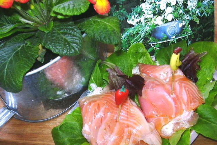 Pannequets de saumon