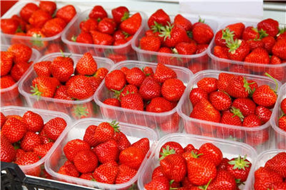 Halte aux pesticides dans les barquettes de fraises