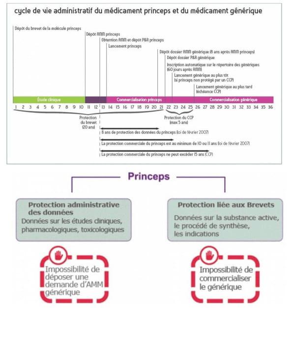 Cycle de vie administratif des médicaments princeps et génériques