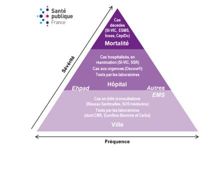 surveillance hospitalisation deces santé publique France