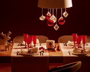 table de fête habitat