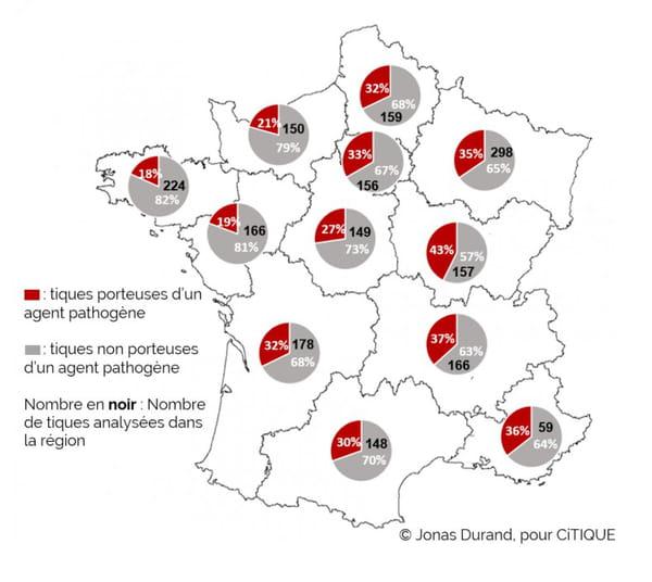 Carte de la présence des tiques en France