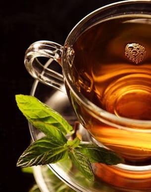 Aliment br le graisse l 39 indispensable th vert - Nettoyer graisse brulee four ...