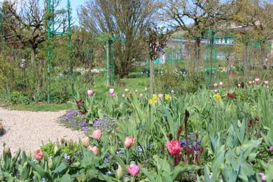 Un jardin fleuri en yvelines for Jardin yvelines