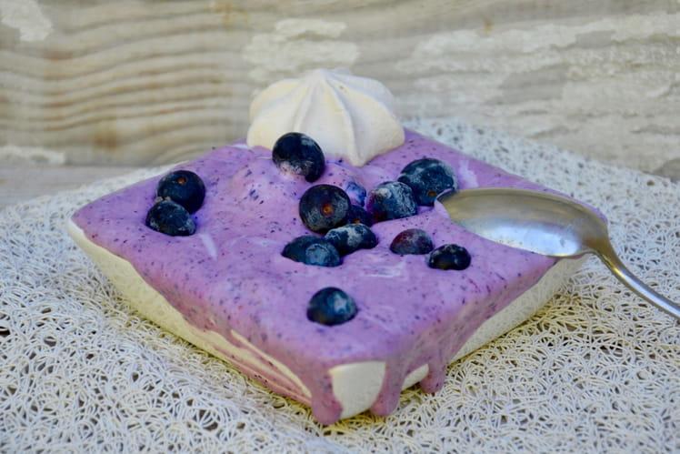 Yaourt glacé ou frozen yoghurt aux myrtilles