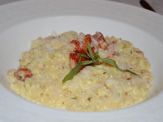Macaroni au homard