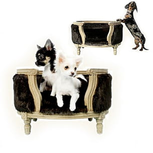 votre chien c 39 est le roi. Black Bedroom Furniture Sets. Home Design Ideas