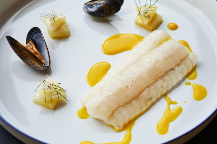 Sole de Douvres, Moules, Daikon, fenouil et sauce safran