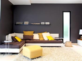 salon jaune et noir. Black Bedroom Furniture Sets. Home Design Ideas