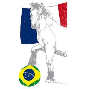 pottoka à l'heure brésilienne