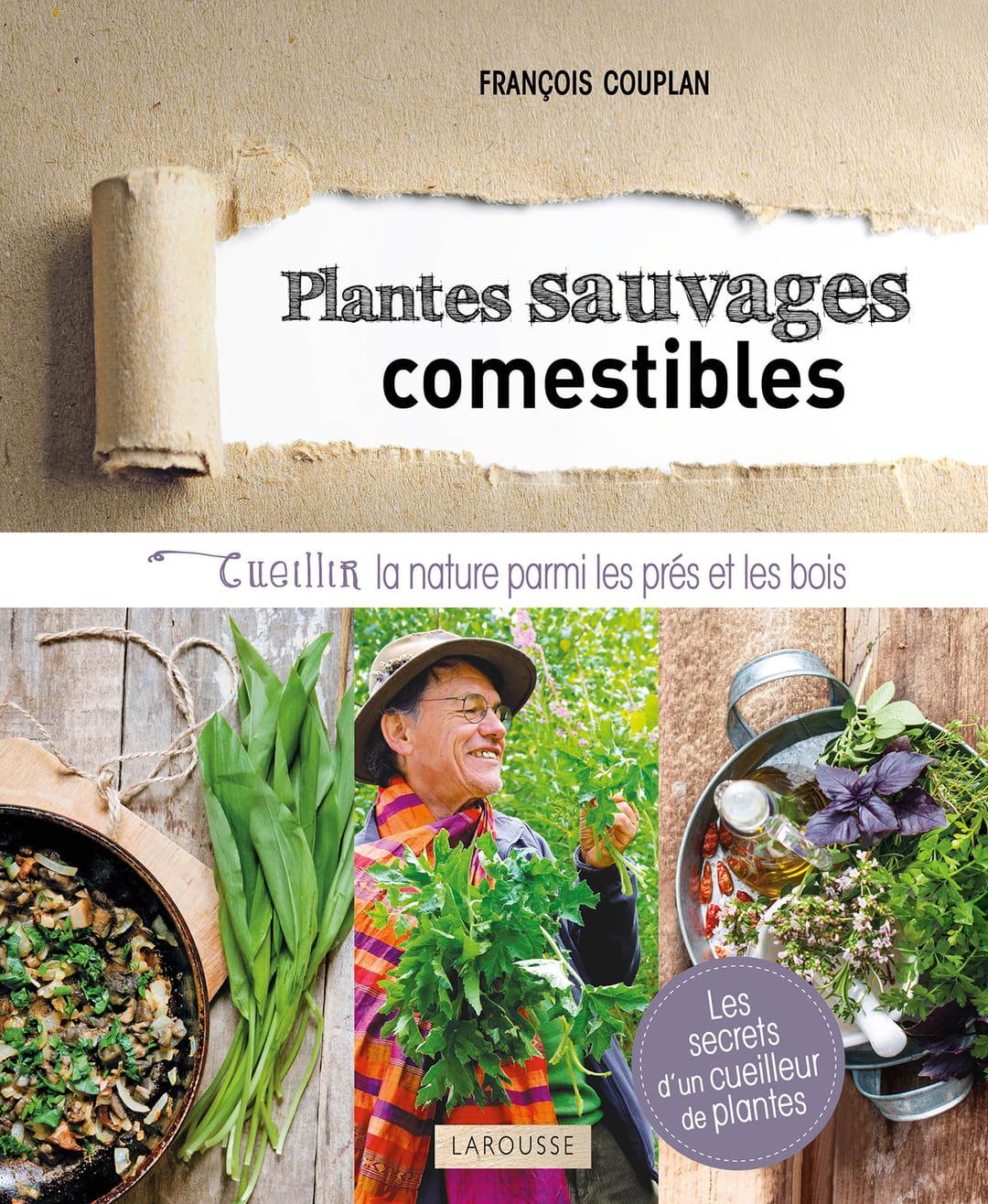 livre-plantes-sauvages-comestibles-françois-couplan-larousse 544a3902808