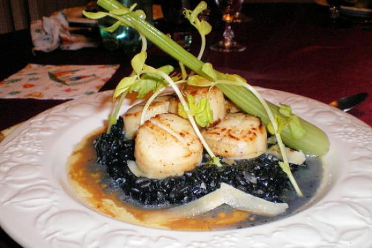 Nid noir de Saint-Jacques au vieux parmesan