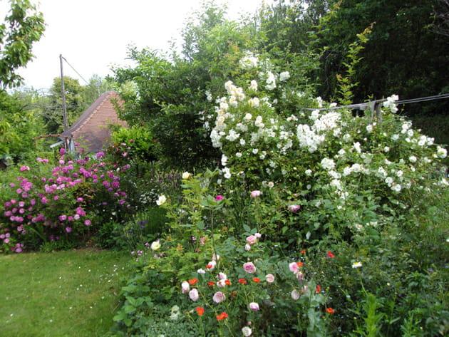 Visitez le jardin anglais de michelle for Salon de jardin en anglais