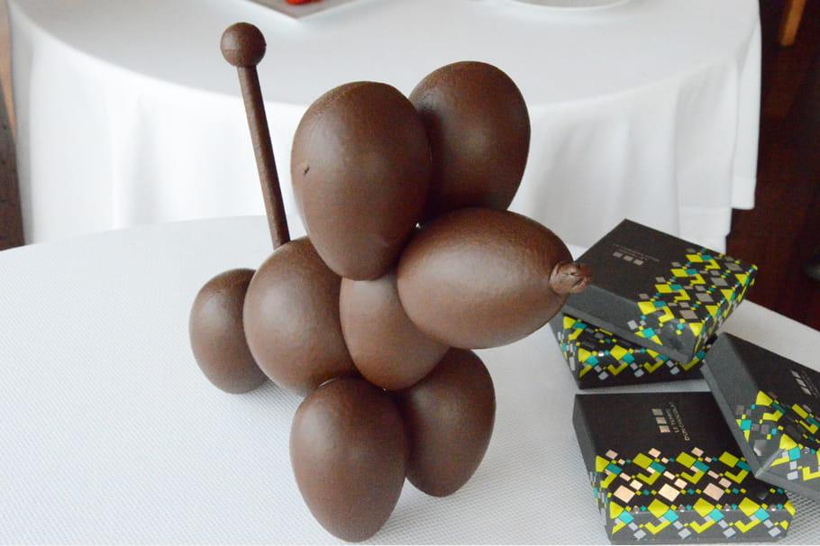 Cho-Koons de Claude Krajner