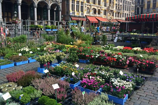 Bruxelles, ville au grand cœur