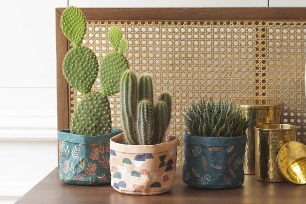 Lot de 3cache-pots Bergamotte x La Redoute Intérieurs