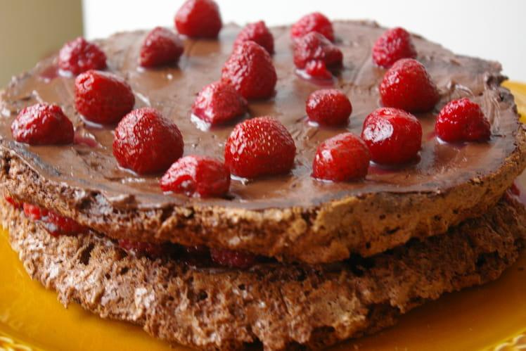 Gâteau au chocolat et aux framboises