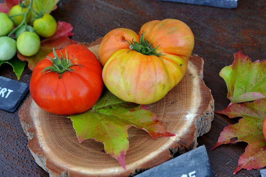 Festival de la Tomate: une édition sous le signe de l'innovation