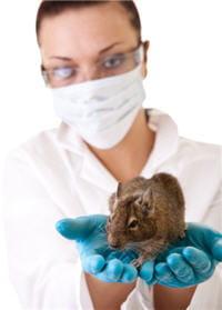 l'institut ramazzini a étudié les conséquences de l'ingestion quotidienne