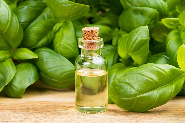 Les huiles essentielles anti-inflammatoires