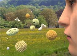 les personnes allergiques réagissent de manière disproportionnée en présence