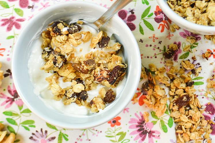 Granola maison aux pépites de chocolat, raisins secs, noix et noisettes