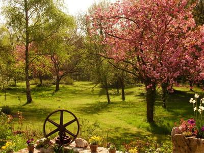 jardin d'igor et tamara a saclas