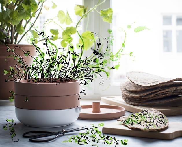 Germoir en terre cuite Användbar d'IKEA