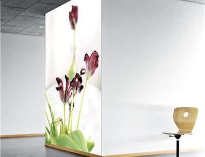 mur d'image 'tulipe' d'isabelle nort chez acte déco