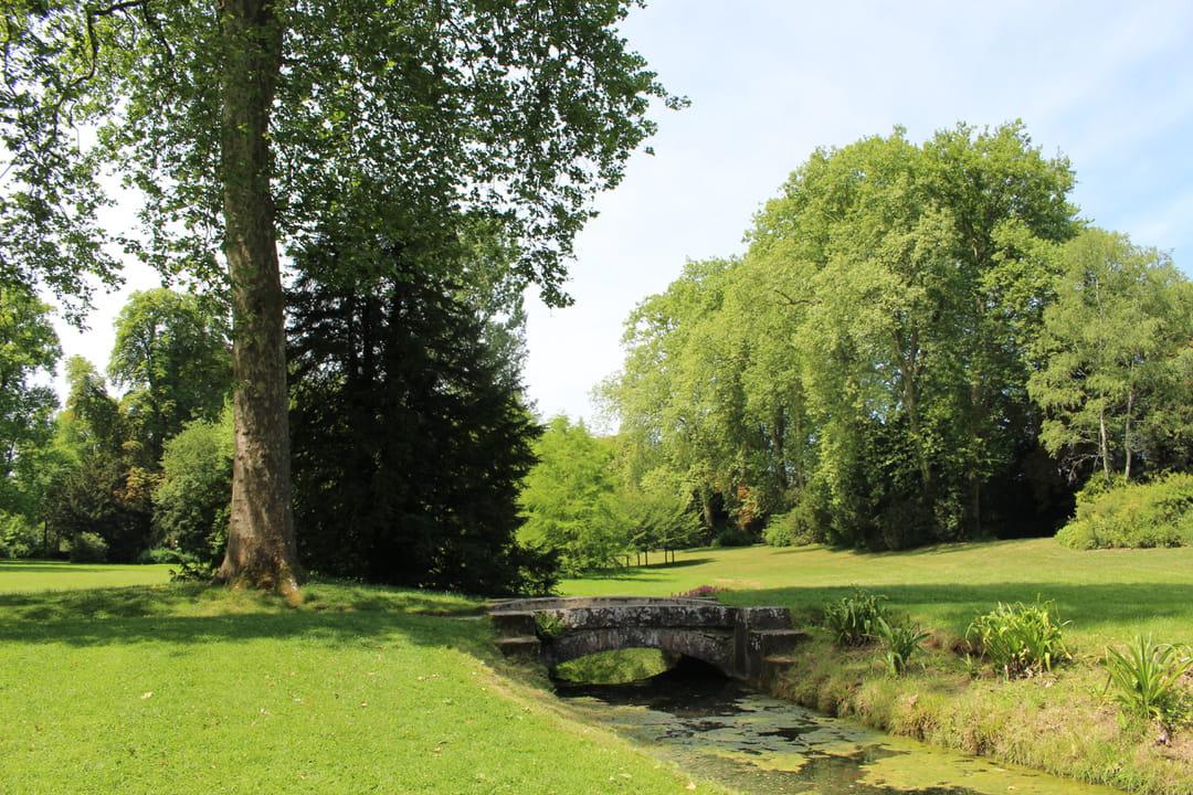 jardin-anglais-fontainebleau