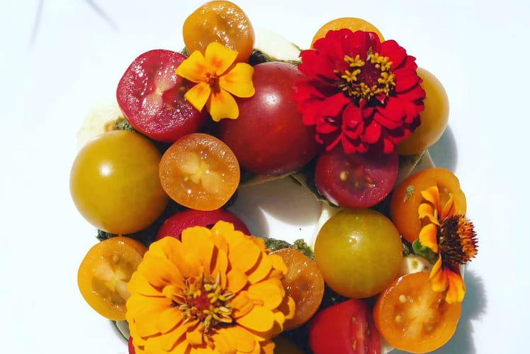 Salade tomates-mozzarella et fleurs