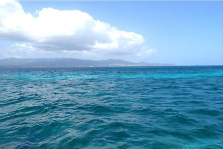 Du snorkeling dans des eaux turquoise