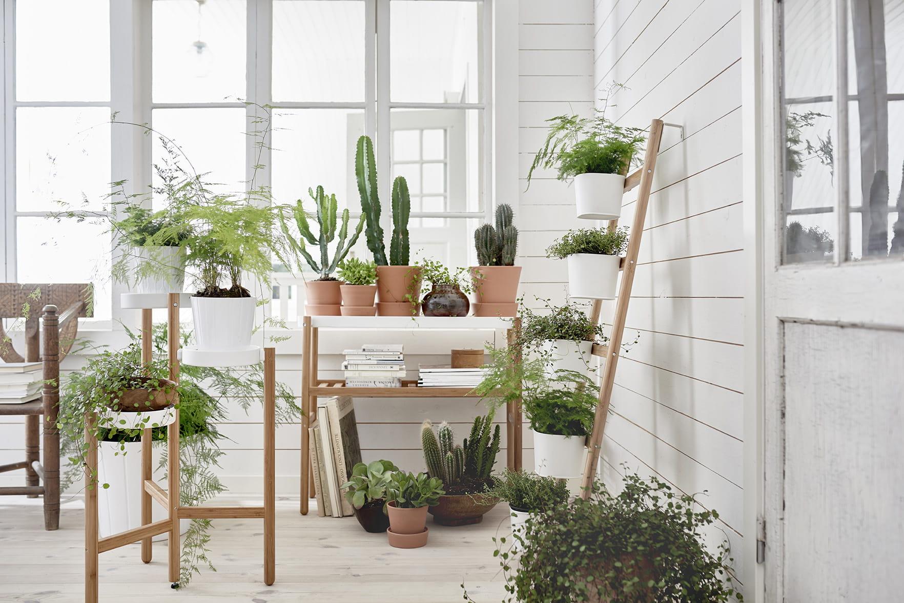 Coup de c ur les supports pour plantes satsumas d 39 ikea - Plante d interieur ikea ...