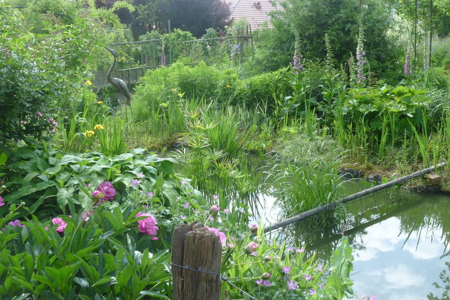 Que faire au jardin en mai?