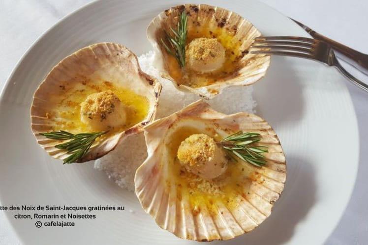 Recette des noix de Saint-Jacques gratinées au citron, romarin et noisettes